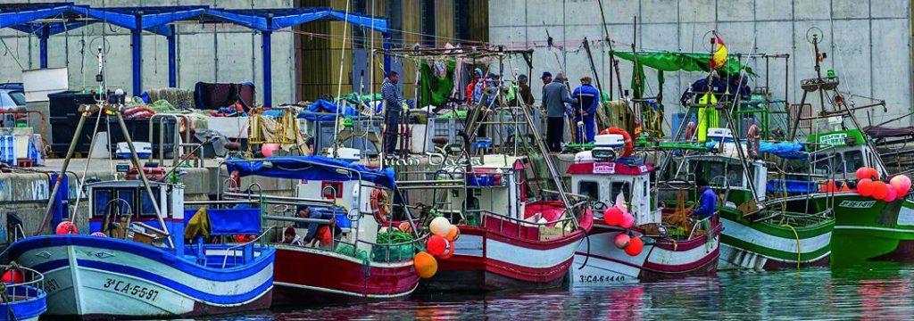 Pesqueros en el puerto de Barbate (foto Juan Daza)